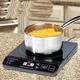 shopbestlove: Portable Induction Cooktop